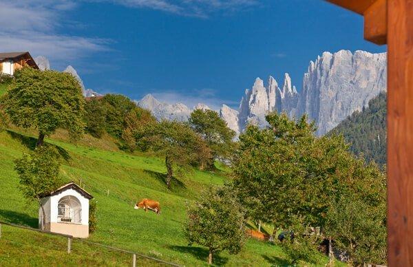 Venite a scoprire il patrimonio naturale dell'UNESCO nelle Dolomiti