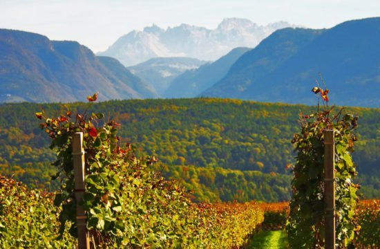 Törggelen im Südtiroler Herbst